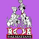 101 Dalmatíncov