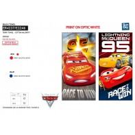 Osuška CARS - Race to win, Sun City